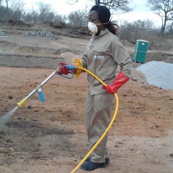 pre construction pest control