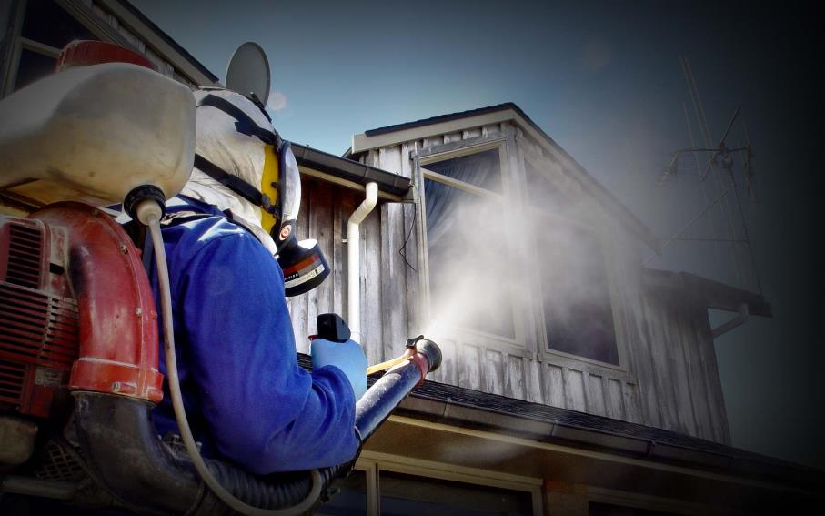 Pest control in Mpumalanga
